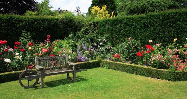 Din guide til romantisk boligstil for Arreglar jardin barato